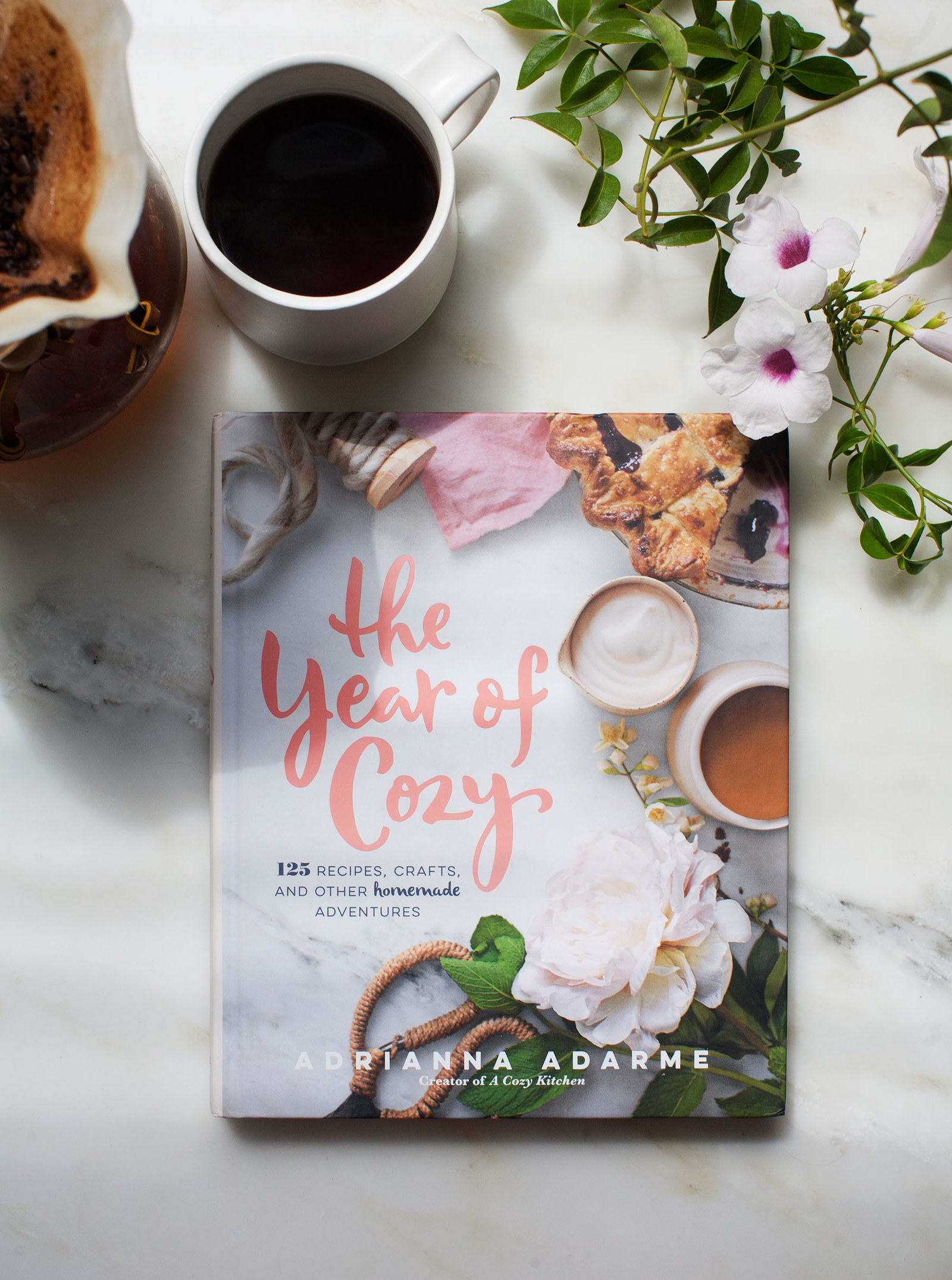 the year of cozy review